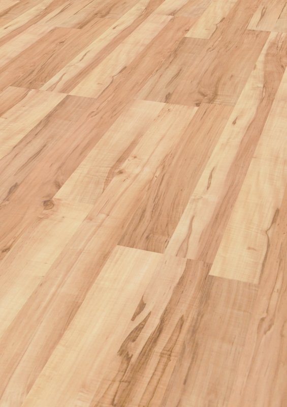 Carelia Maple Laminat Parke D 437